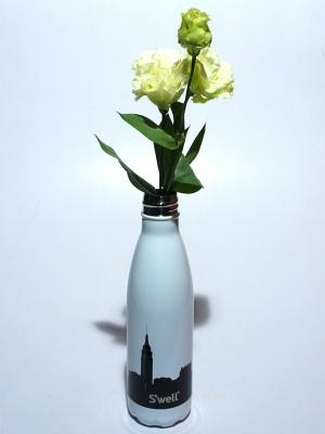 Swell Bottle 17oz  NY