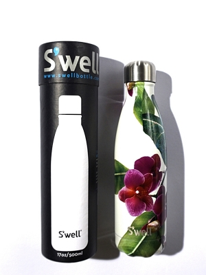 Swell Bottle Cattleya